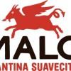 MaloCantina2